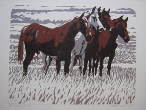 Curious horses