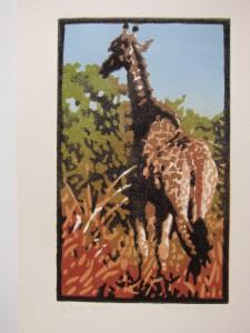 Krugar giraffe