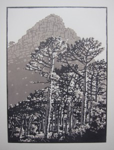 Lions Head pines in greys