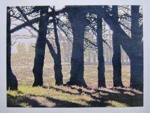 Tierfontein pines